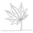 one line drawing of maple leaves one hand drawn lineart design isolated on white background
