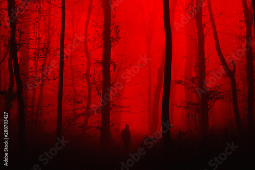 Foto auf Leinwand Rot kubanischen surreal horror landscape, man in forest nightmare scene