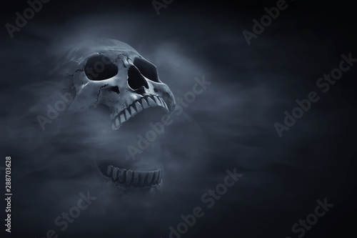 Stampa su Tela Human skull on dark background