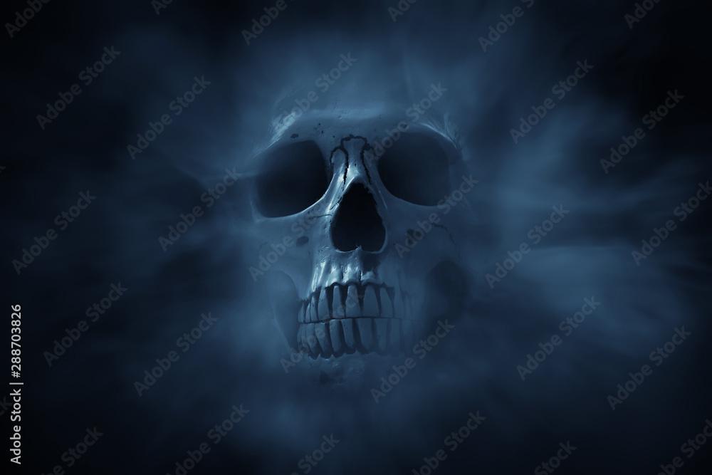 Fototapeta Human skull on dark background