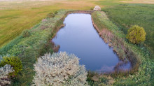 Nebraska Wetland And Livestock Pond With Moss And Algae.