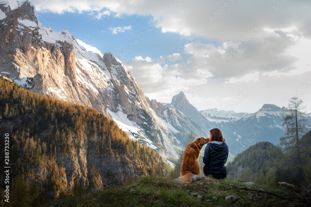 Fototapety, obrazy: girl with a dog in the mountains. Autumn mood. Traveling with a pet. Nova Scotia Duck Tolling Retriever
