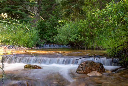 Canvas Print Small mountain creek in the forest.
