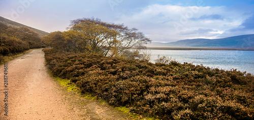 Slika na platnu Autumn at Loch Muick in Royal Deeside