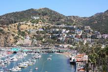 Die Avalon Bay.  Santa Catalin...