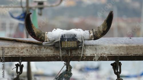 Photo  Corna di toro sul ponte sollevatore di un peschereccio