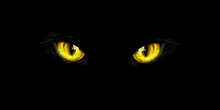 Black Cat's Yellow Eyes On Bla...