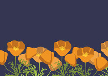 California Poppy Background