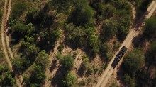 Birds Eye View Drone Shot Moving Up While A Safari Game Drive Vehicle With Guests Drives Up A Dirt Road In An African Game Reserve