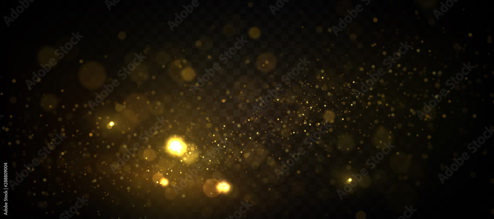 Fototapety, obrazy: Golden particles, sparkling bokeh lights isolated on transparent background