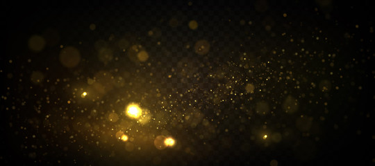 Golden particles, sparkling bokeh lights isolated on transparent background