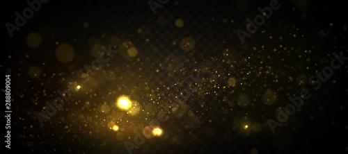 Fotografie, Obraz Golden particles, sparkling bokeh lights isolated on transparent background