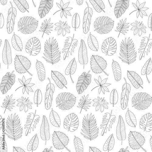 Fototapety, obrazy: Leaves of tropical plants black and white outline seamless pattern