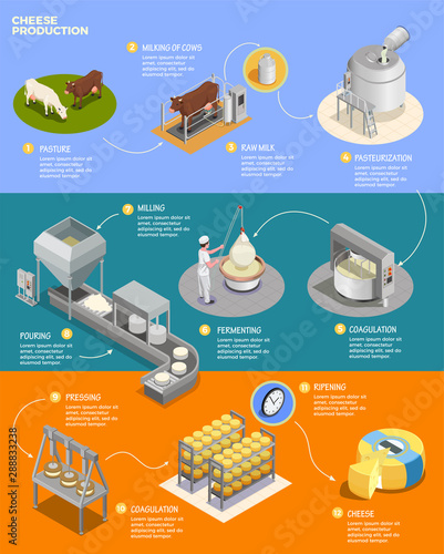 Pinturas sobre lienzo  Cheese Production Isometric Infographics