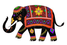 Indian Elephant Color