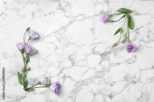 Foto auf Leinwand Blumen Flat lay composition with beautiful Eustoma flowers on marble table, space for text