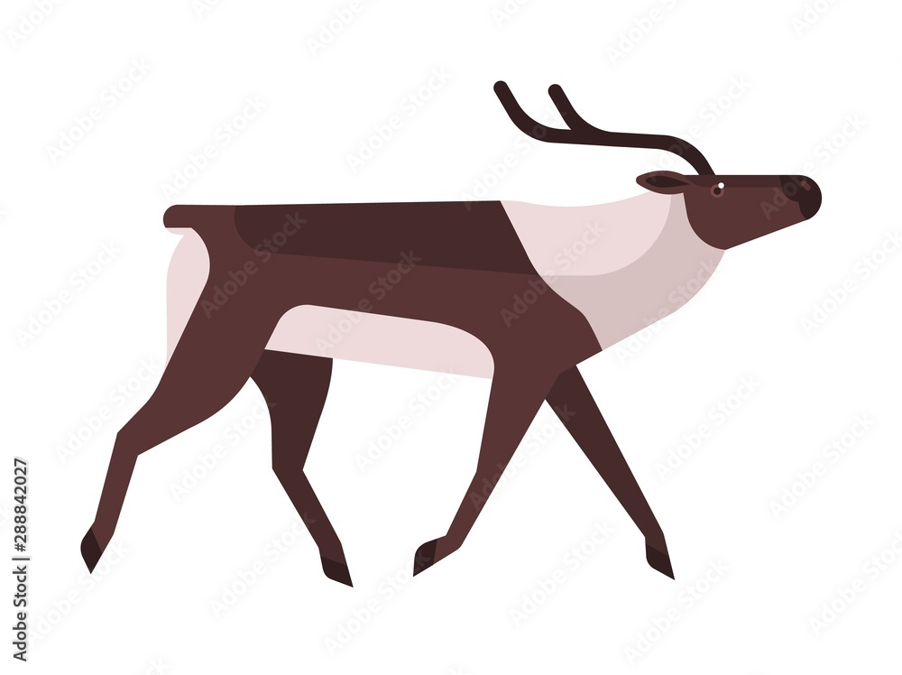 Fototapety, obrazy: Majestic deer, reindeer flat vector illustration. Wild stag, wapiti minimalistic sign. Forest fauna, woodland wildlife, cervus, elaphus side view. Hunting season symbol isolated on white background.
