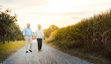 Senior Woman And Man Having A Walk Along A Field