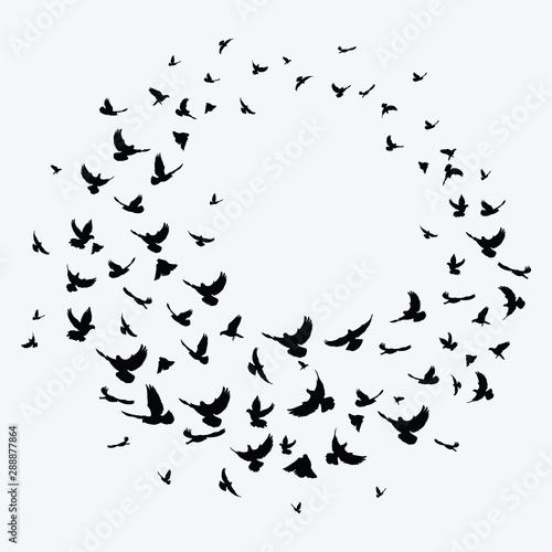Cuadros en Lienzo Silhouette of a flock of birds