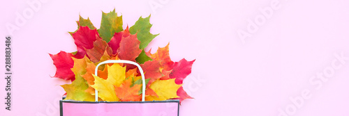 Autumn sale. Paper bag with autumn maple leaves. Shopping concept Wallpaper Mural