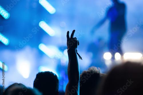 Fototapeten Tanzschule crowd of people having fun at concert - summer music festival
