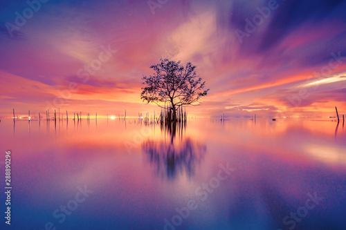 Foto auf AluDibond Koralle Pak Pra, Phatthalung, Southern of Thailand. August 5, 2019. Most beautiful sunrise in the world.