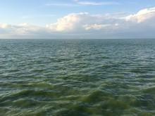 Lake Erie Summer Algae Bloom