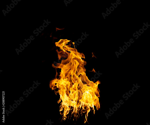 Photo sur Aluminium Texture de bois de chauffage Group of real and hot flames are burning on a black background.