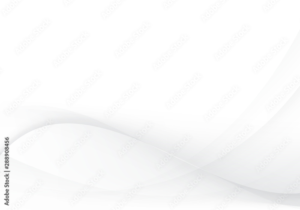 Fototapeta White and gray abstract wave vector image Modern background