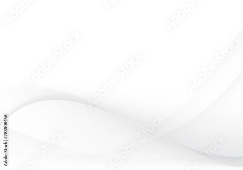 Obraz White and gray abstract wave vector image Modern background - fototapety do salonu