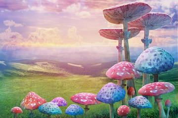 fantastic wonderland landscape with mushrooms. illustration to the fairy tale
