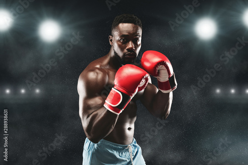 Fotografiet  Confident african boxer standing in pose and ready to fight
