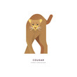 Wild cougar cat isolated animal cartoon