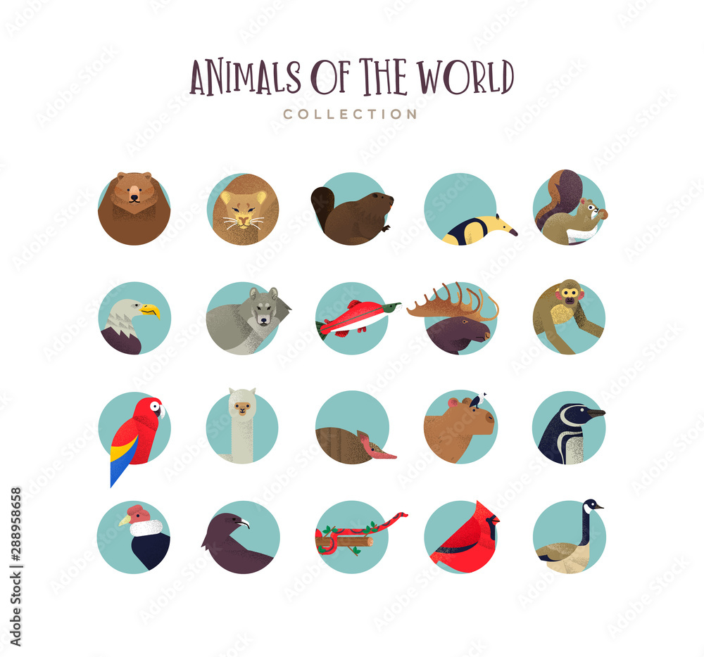 Fototapety, obrazy: Animal icon collection of exotic wildlife symbols
