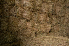 Stored Hay Bales Wall  Inside ...