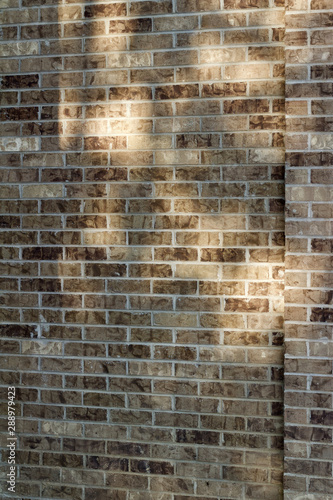 Canvas Prints Brick wall Beige brown brick wall texture with tree shadows cast from low angle sunlight