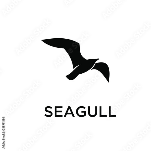 seagull logo icon designs vector Fototapeta