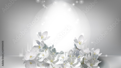 фотография Cosmetic realistic silver vector poster with shining light in center and falling white jasmine flowers