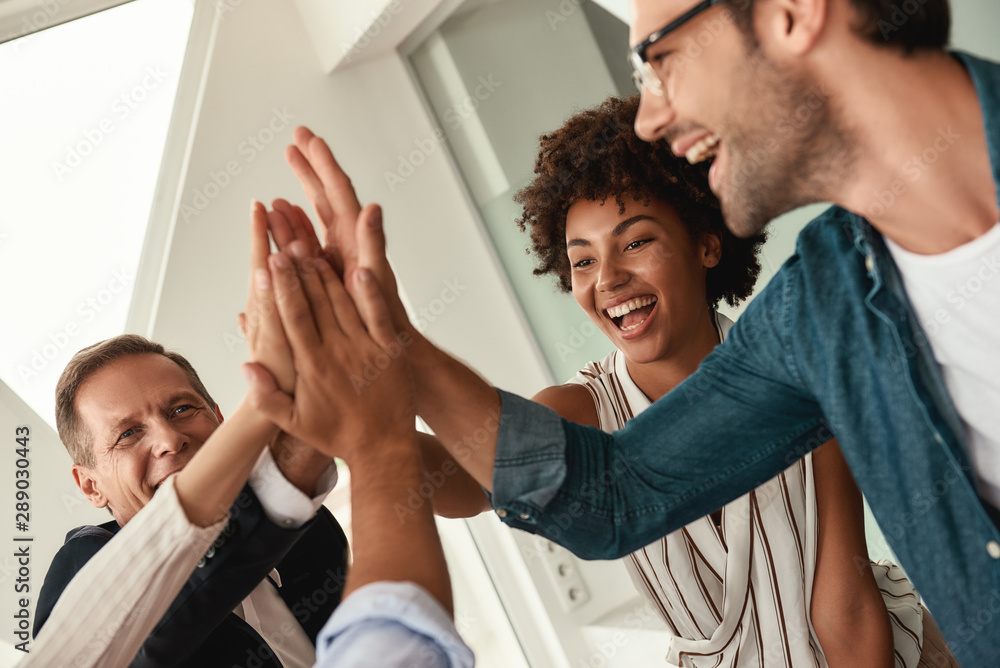Fototapeta Celebrating success. Business people giving each other high-five and smiling while working together in the modern office
