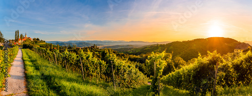 Fotografia  Landscapa panorama of vineyard on an Austrian countryside with a church in the b