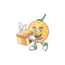 With Box Fruit Cantaloupe Cartoon Character For Food