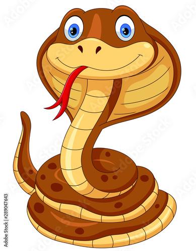 Cute cobra snake cartoon isolated on white background