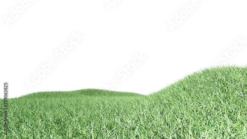 Foto auf Gartenposter Olivgrun 3D grass arena isolated on white background.