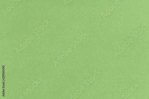 green paper texture background close up - 289065041