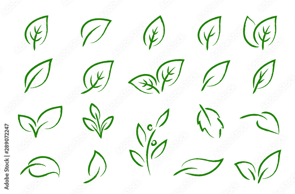 Fototapety, obrazy: green leaves branches icons eco set silhouettes