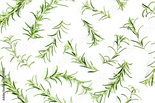 Obraz Green branchs and leaves of rosemary isolated on a white background. Мedicinal herbs. Flat lay. Top view - fototapety do salonu