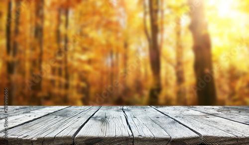 Fotografie, Obraz  Empty old wooden table background