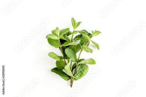 Obraz Green bundle and leaves Mint isolated on white background. Set of peppermint. Mint Pattern. Flat lay. Top view. - fototapety do salonu