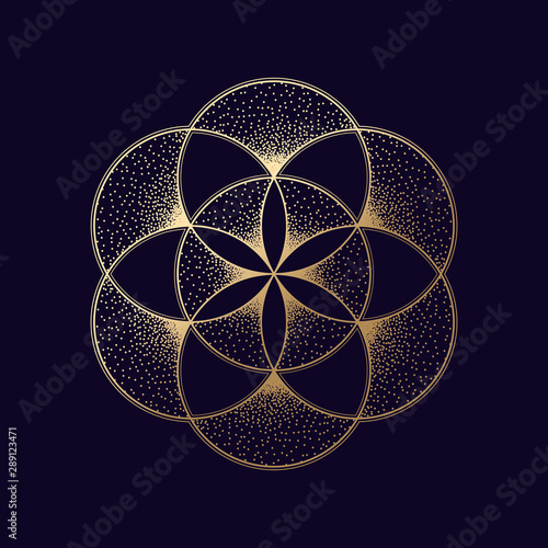 Flower of life symbol Fototapete