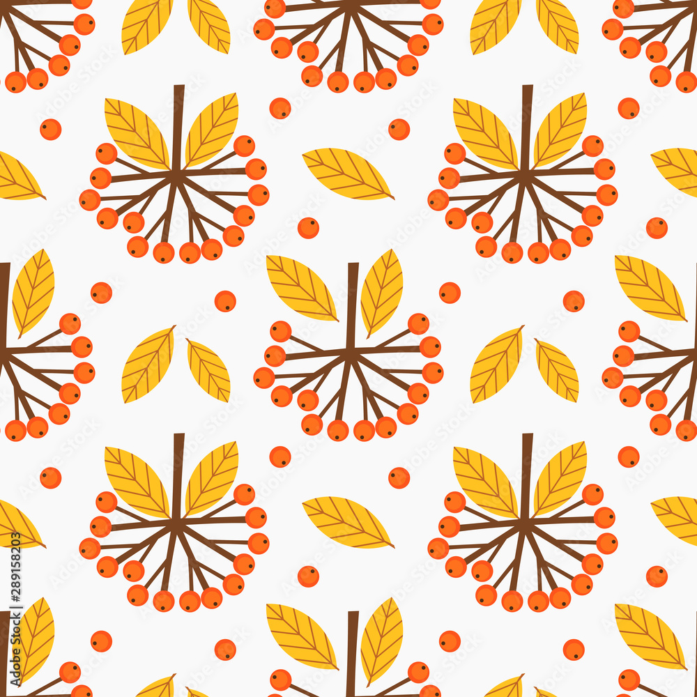 Fototapeta Rowan berries fruits autumn pattern.